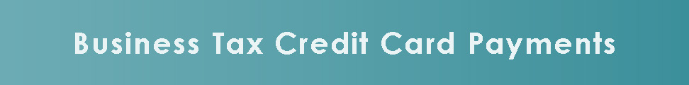 Business Tax Credit Card Payments